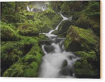Mossy Fall #3 Wood Print