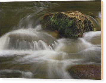 Wood Print featuring the photograph Mossy Foam by Timothy McIntyre