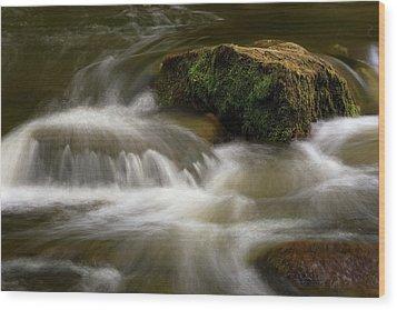 Mossy Foam Wood Print by Timothy McIntyre