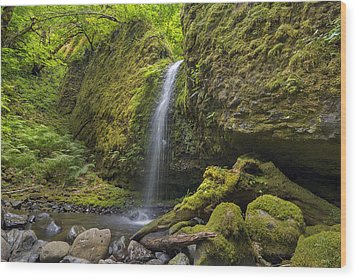 Mossy Grotto Falls In Summer Wood Print by David Gn