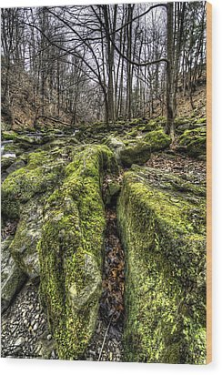Mossy Trail Wood Print