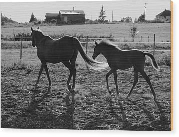 Mother And Baby Wood Print by J D Banks