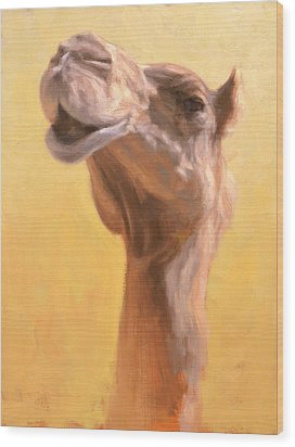 Mother Camel Wood Print by Ben Hubbard