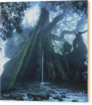 Wood Print featuring the photograph Mother Tree by Tatsuya Atarashi
