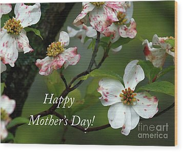 Wood Print featuring the photograph Mother's Day Dogwood by Douglas Stucky
