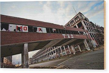 Motor City Industrial Park The Detroit Packard Plant Wood Print by Gordon Dean II