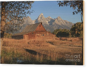 Moulton Barn At Sunrise Wood Print by Edward R Wisell