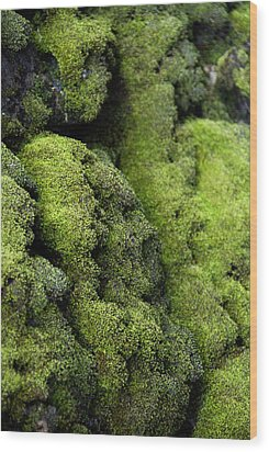 Mounds Of Moss Wood Print