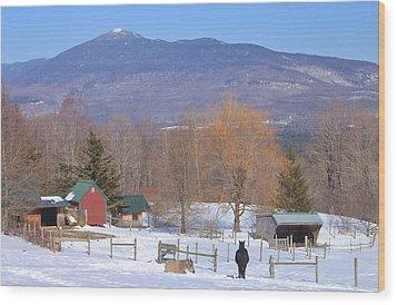 Mount Abraham And Winter Farm Green Mountains Wood Print by John Burk