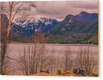 Mount Baldy From Point Park Wood Print by Tom Potter