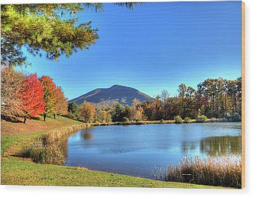 Mount Jefferson Reflection Wood Print by Dale R Carlson
