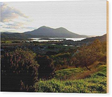 Mount Konocti Wood Print by Will Borden