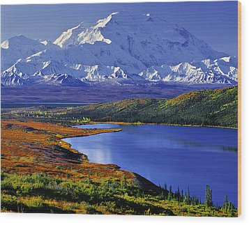 Mount Mckinley And Wonder Lake Campground In The Fall Wood Print