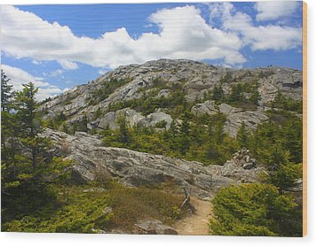 Mount Monadnock Summit From Pumpelly Trail Wood Print