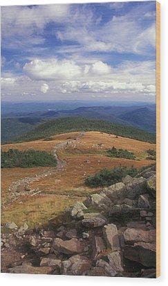 Mount Moosilauke Summit Wood Print by John Burk