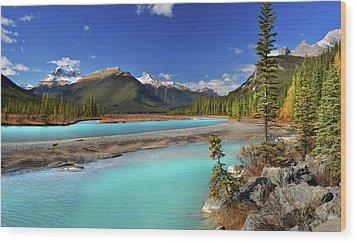 Mount Saskatchewan Wood Print by John Poon