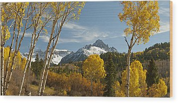 Mount Sneffels Autumn Panorama Wood Print by Dusty Demerson