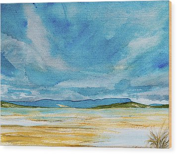View Of Mount Wellington From South Bruny Island Wood Print