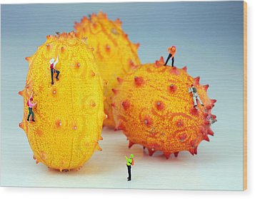 Mountain Climber On Mangosteens Wood Print by Paul Ge