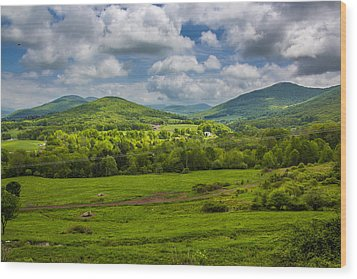 Wood Print featuring the photograph Mountain Field Of Greens by Paula Porterfield-Izzo