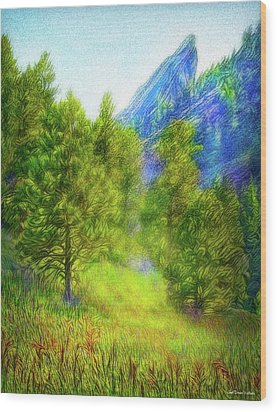 Mountain Field Springtime Wood Print