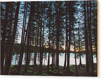 Wood Print featuring the photograph Mountain Forest Lake by James BO Insogna