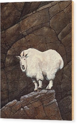 Mountain Goat Wood Print by Frank Wilson
