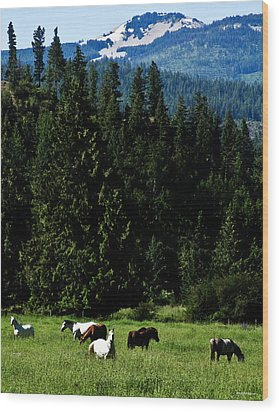 Mountain Herd Wood Print