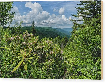 Wood Print featuring the photograph Mountain Laurel And Ridges by Thomas R Fletcher