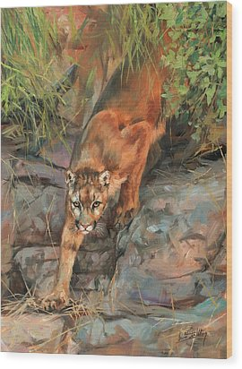 Wood Print featuring the painting Mountain Lion 2 by David Stribbling