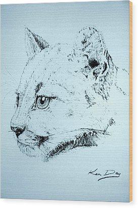 Mountain Lion Wood Print by Ken Day