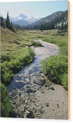 Mountain Meadow And Stream Wood Print by Quin Sweetman