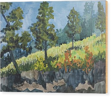 Mountain Meadow Wood Print by Bethany Lee
