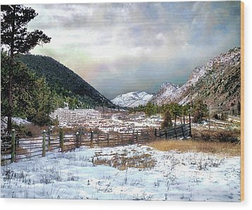 Mountain Meadow Wood Print by Jim Hill