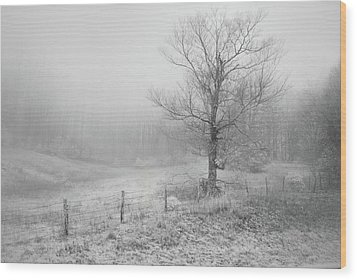 Mountain Mist Wood Print