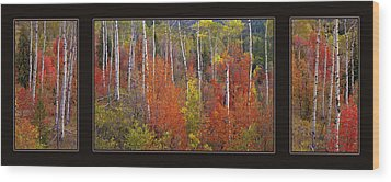 Mountain Of Color Wood Print by Leland D Howard