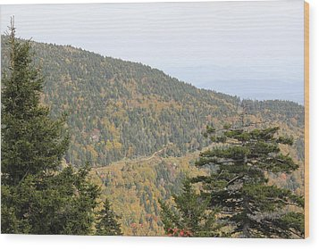 Mountain Passage Wood Print
