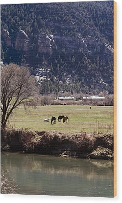 Wood Print featuring the photograph Mountain Pasture Vertical by Lorraine Devon Wilke