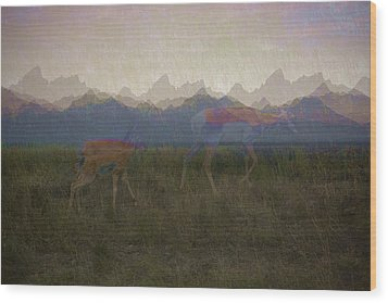 Mountain Pronghorns Wood Print