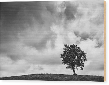 Tree On Hill - Doughton Park Blue Ridge Parkway Wood Print