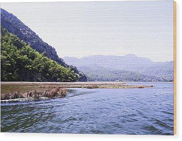 Mountain River Wood Print by Svetlana Sewell