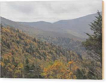 Mountain Side Long View Wood Print
