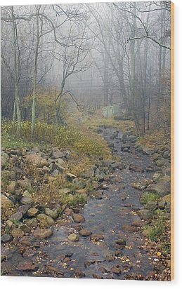 Wood Print featuring the photograph Mountain Stream by Alan Raasch