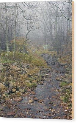 Mountain Stream Wood Print by Alan Raasch
