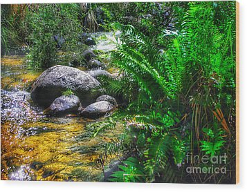 Mountain Stream Wood Print by Blair Stuart