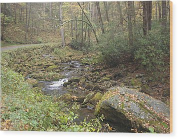 Mountain Stream Wood Print by Cindy and Dave Hicks