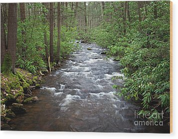 Wood Print featuring the photograph Mountain Stream Laurel by John Stephens