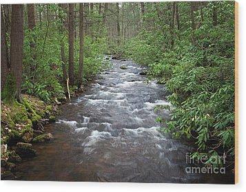 Mountain Stream Laurel Wood Print by John Stephens