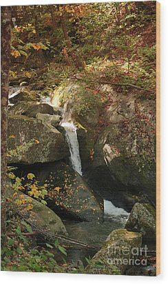 Mountain Stream Wood Print