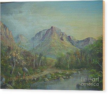 Mountain Stream Wood Print by Rita Palm